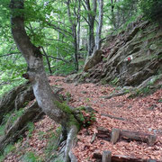 Sul sentiero per la Capanna Albagno