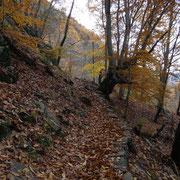 Verso i Monti di Artore