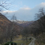 Seguiamo la sterrata per l'Alpe Coransù