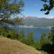 Monti di Gerra 818 m