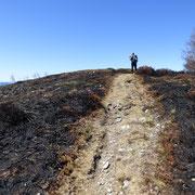 Monte Paglione 1554 m, evidenti i segni del recente incendio ...