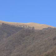 Monte Boglia visto da Castello