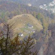 Alpe Pluni (Polunia)