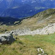 Verso Mottella e l'Alpe Stou