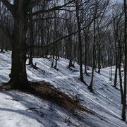 Sul sentiero che dall'Alpe Bolla conduce a Brè