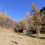 Alpe Fiorina 1340 m