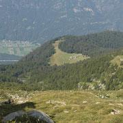 Alpi di Peurett, Peu e Canee