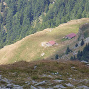 Alp de Calvaresc Desora