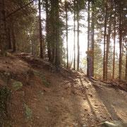 Dal sentiero che sale a Cimetta, deviamo per l'Alpe Vegnasca