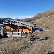 Alpe Cottino 1447 m