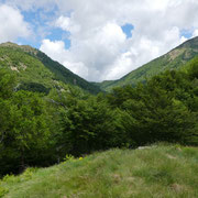 Valle di Caneggio