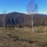 Alpe Vicania 659 m