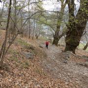 Salita ai Monti di Mezzovico