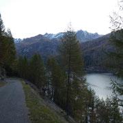 Sulla strada che poi diventa mulattiera fino all'Alpe Cavalasca