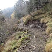 Il bel sentiero che conduce all'Alpe Poltrinone