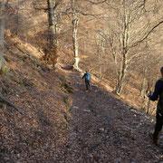 Verso l'Alpe di Blessagno