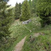Vicino all'Alpe Valsecco