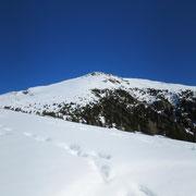 Piz de Molinera dall'Alp di Brogoldone