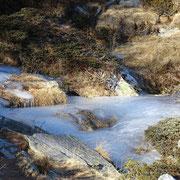 Passaggi ghiacciati ............
