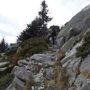 Sul sentiero per la Capanna Gesero