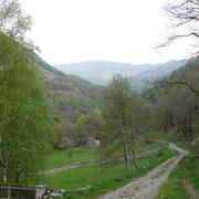 Mugena 780 m