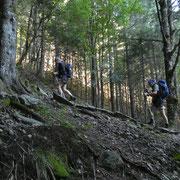 Saliamo all'Alp d'Albionasca
