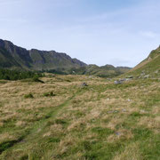 Proseguiamo per l'Alpe Foppa di Rèdich
