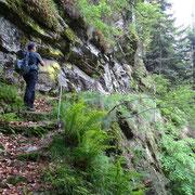 Sentiero per Alpe Nuovo