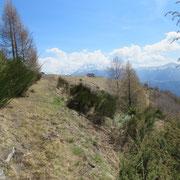 Alpe Mognone