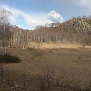 Gola di Lago 972 m