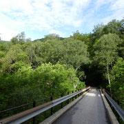 Strada militare per i Monti di Travorno