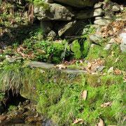 Fontana a Caslitt