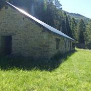 Alpe di Cadino 1656 m