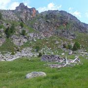 Alpe di Canee 1995 m