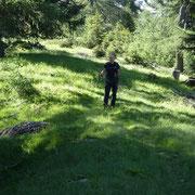 Sul sentiero Puscett - Pian Lasnèla
