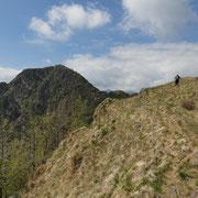 Sulla cresta di collegamento tra le Rocce del Gridone ed il Monte Torriggia