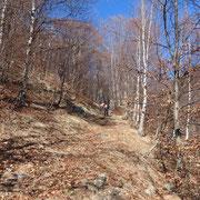 Sul sentiero che conduce a Cangili e Monterecchio