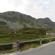 Passo dello Spluga 2115 m