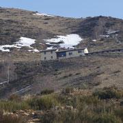 Alpe Musgatina 1383 m