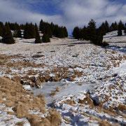 Discesa all'Alpe Croveggia