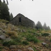Alpe Valsecco 1577 m