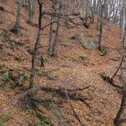 Sentiero per i Monti di Artore