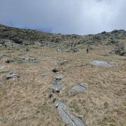 A 2200 m circa abbandoniamo il sentiero per salire alla cima