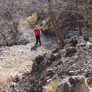 Sul sentiero per l'Alpe Bolgia