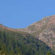 Pass de Buffalora visto dall'Alp de Bec Sot