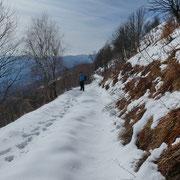 Verso l'Alpe di Spoccia
