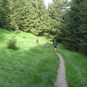Saliamo all'Alpe Cristallina