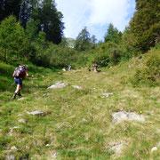 Sentiero segnalato per l'Alp de Mem