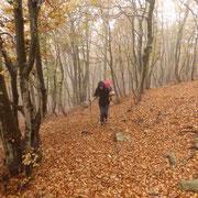 Salita al Monte Paglione