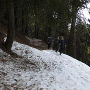 Sul sentiero per l'Alpe d'Arbino